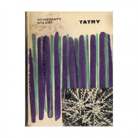 "Konstanty Stecki ""Tatry"""