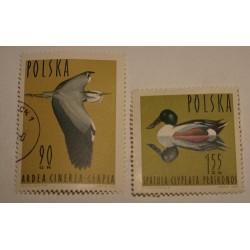 1964 Ptaki wodne 90gr, 1,55zł